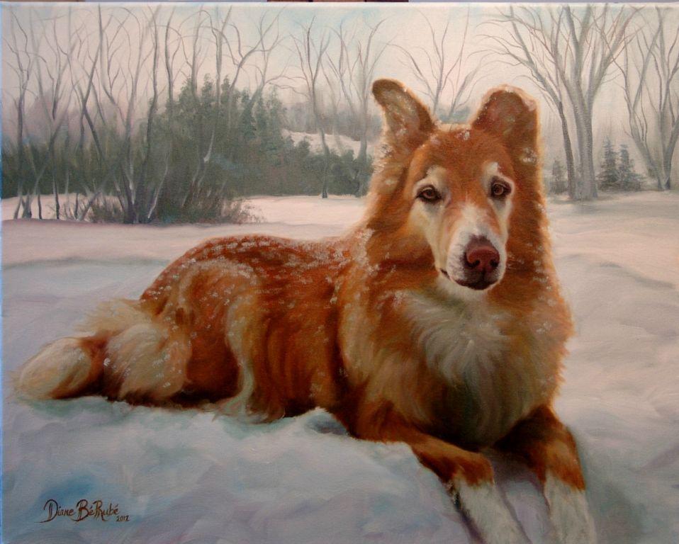 Animalier-chien-huile-diane-berube