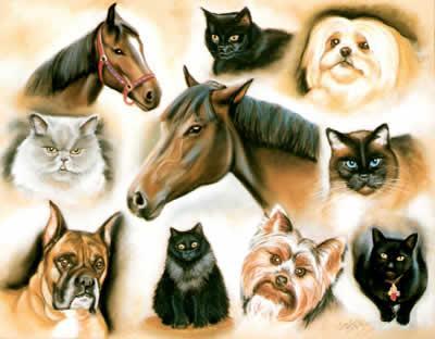 Animalier-multiples-pastel-diane-berube