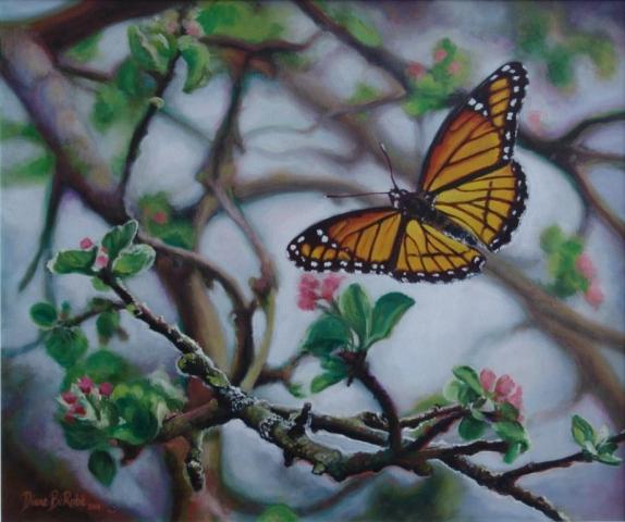 Papillon-huile-diane-berube