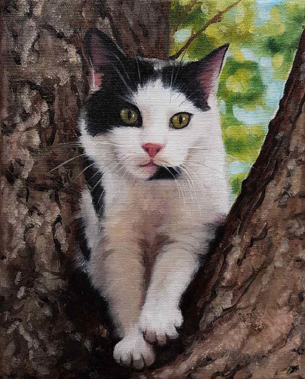Animalier-arbre-huile-diane-berube